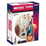 《4D PUZZLE 》人體器官 - 器官